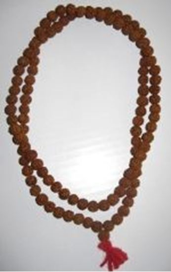 "Picture of Rudraksha Mala 16-17"" long"