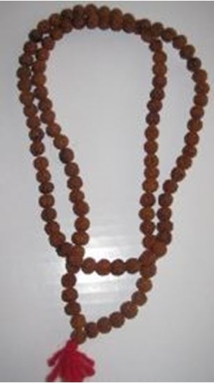 "Picture of Rudraksha Mala 18-20"" long"